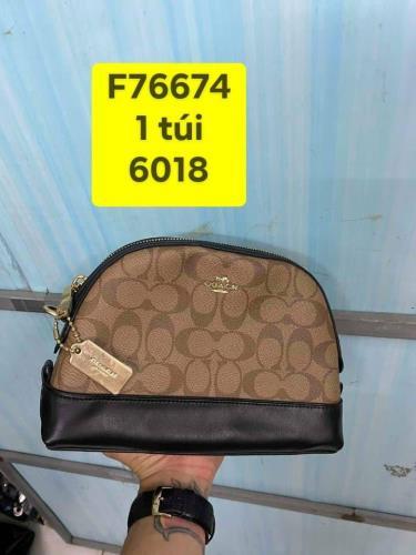Hàng Chính Hãng Túi Coach Signature Mini Dome Crossbody Khaki Black 2020** New **